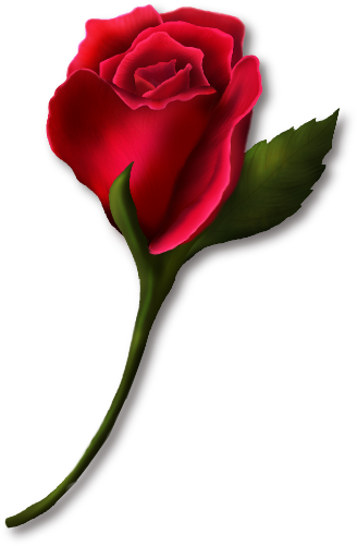 Rose clipart rose bud. Red painted florals buds