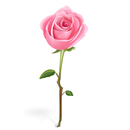 Clipart rose single. Free cliparts download clip