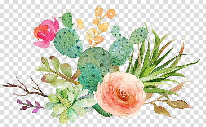 Pink and green succulents. Clipart rose succulent