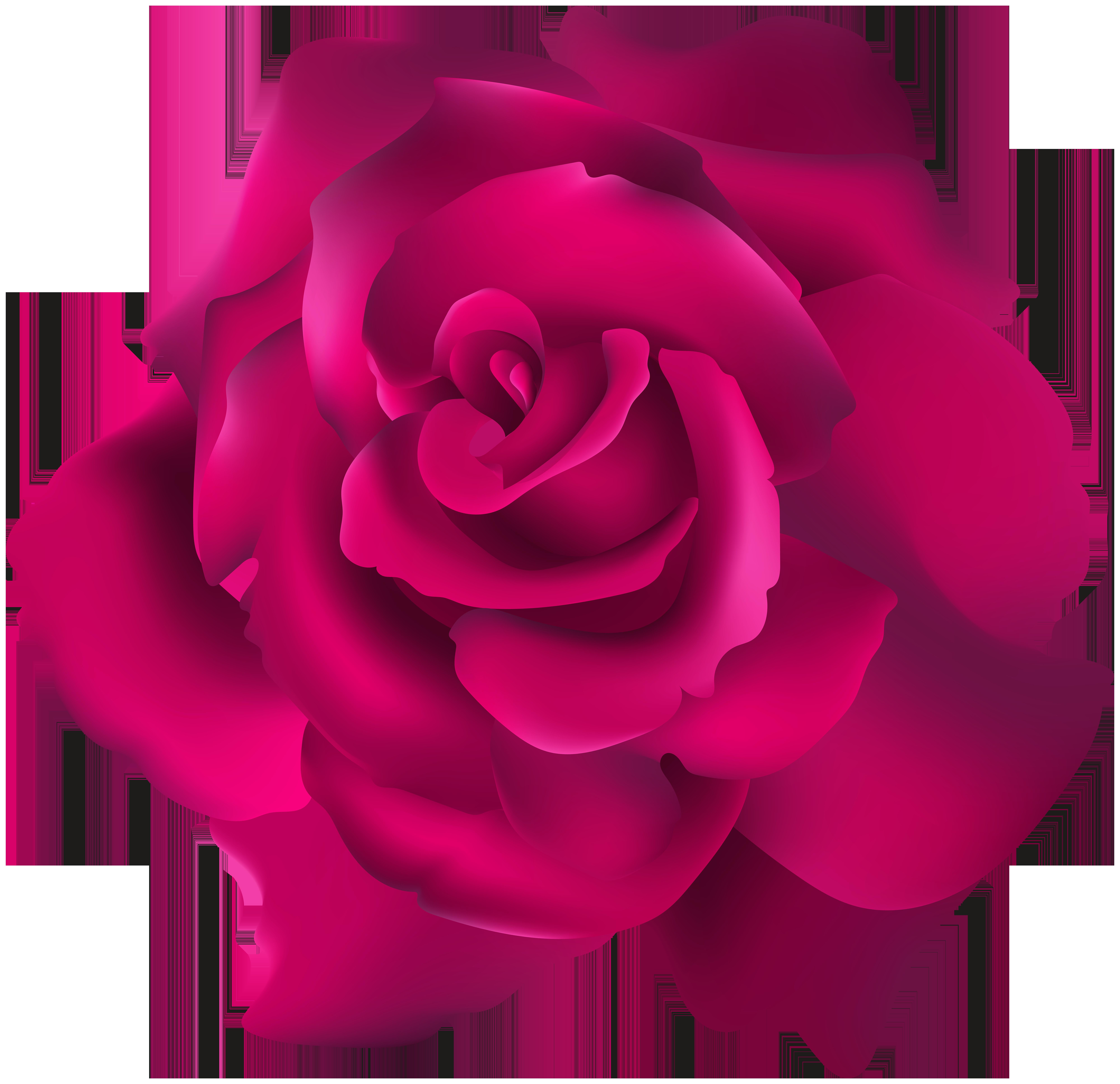 Clipart rose tea. Pink transparent clip art