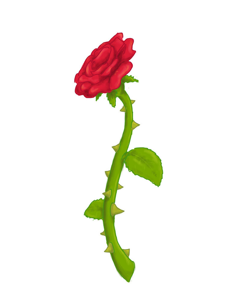 Clipart rose thorn. Free cliparts download clip