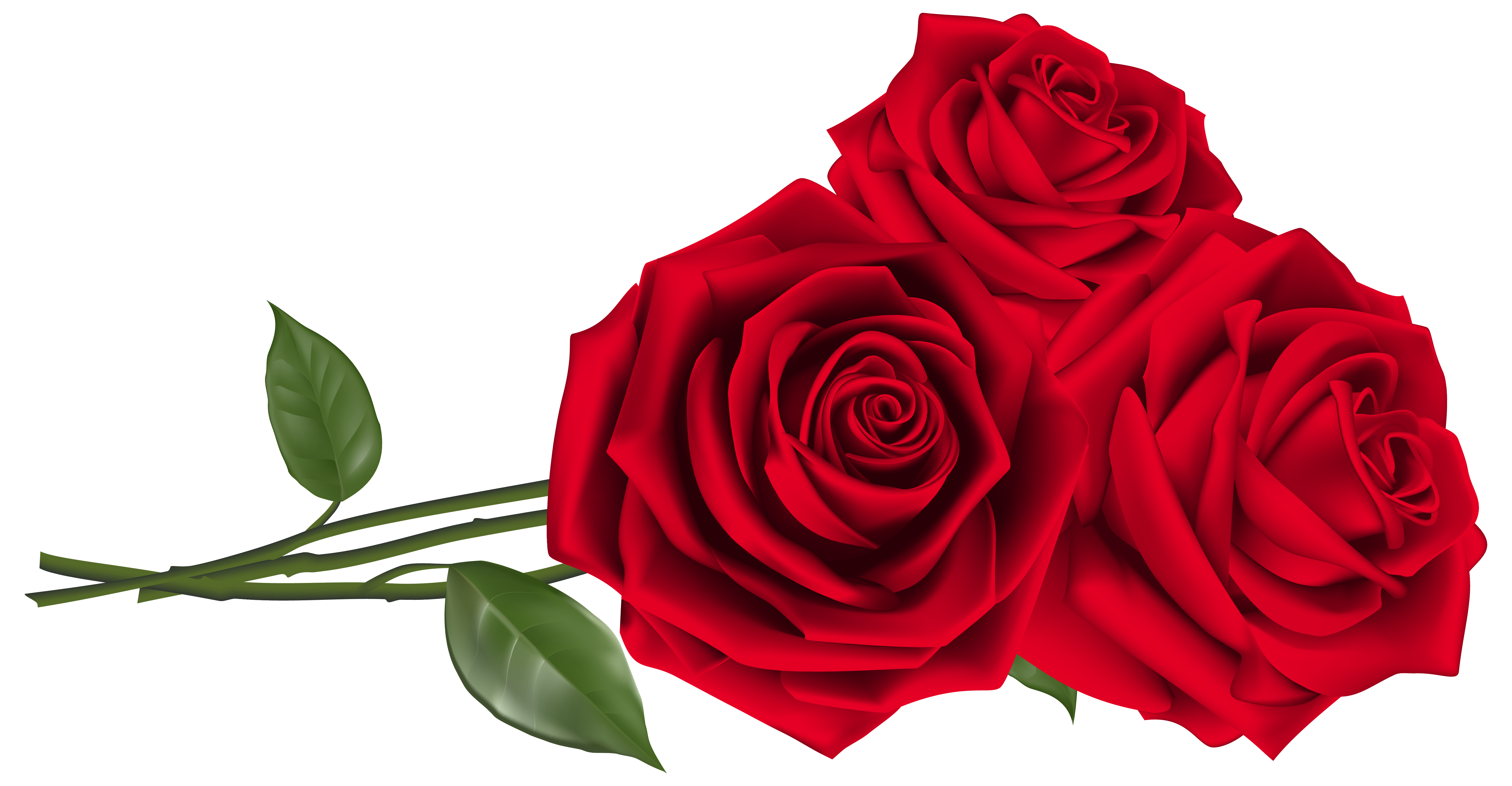 Three red png image. Clipart roses valentines