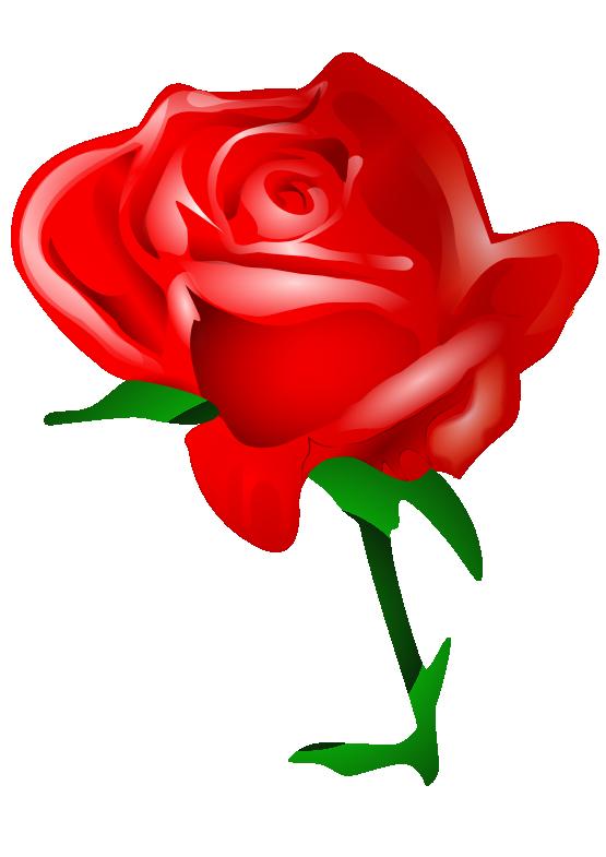 Clipartist net clip art. Clipart rose valentines