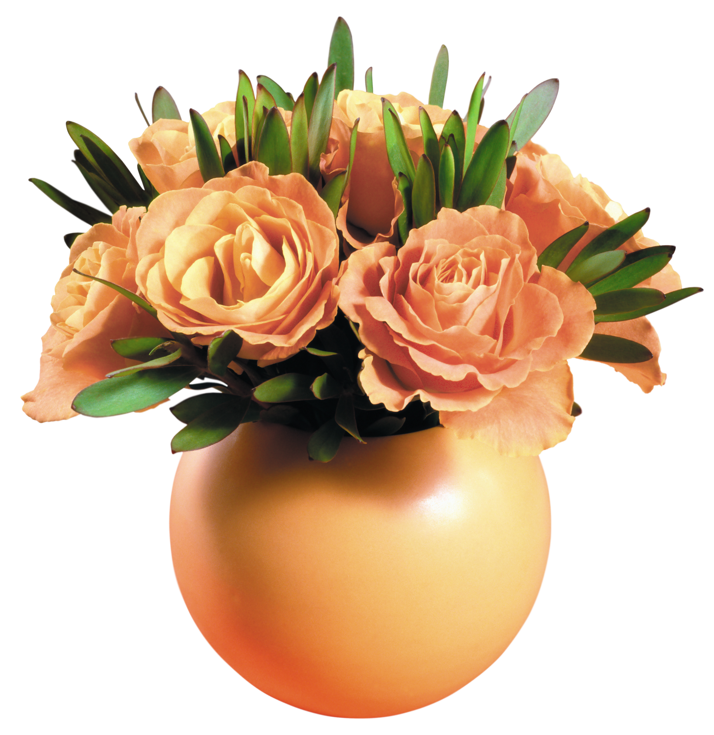 Yellow rose transparent png. Vase clipart gold