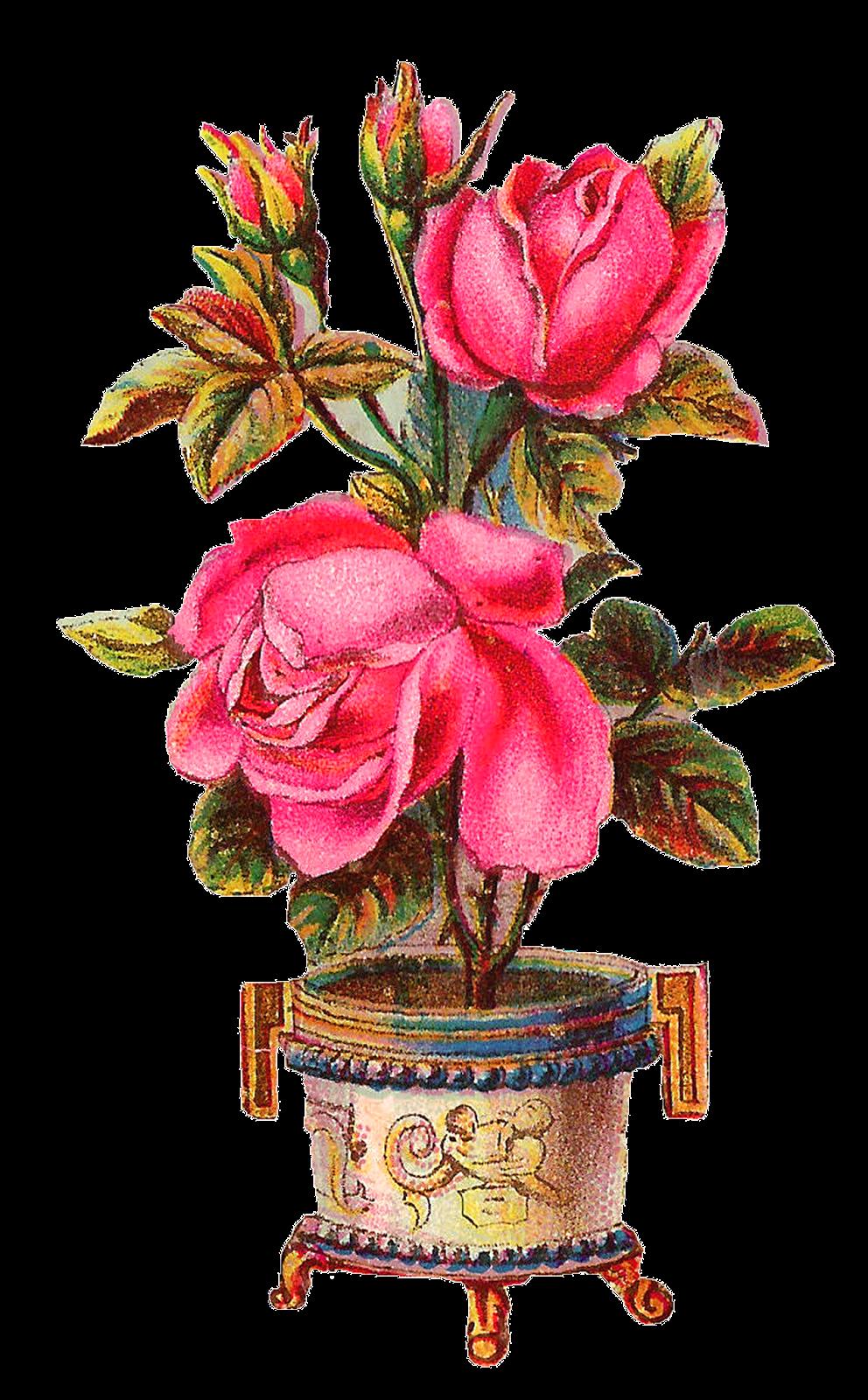 Antique images digital scrapbooking. Clipart roses vase