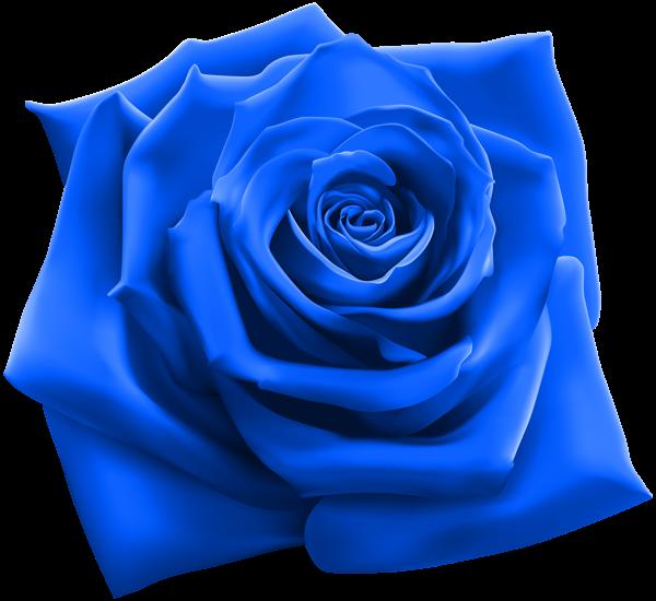 Clipart rose vector. Pin by pirjo humpas