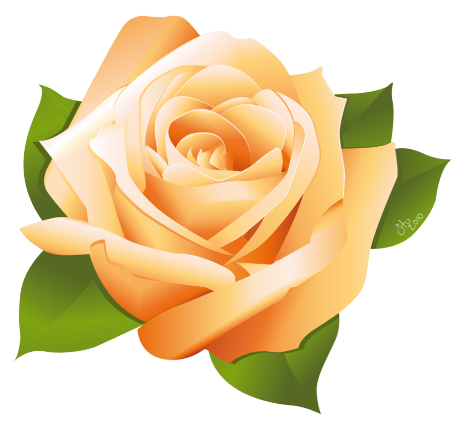 Rose by stoobainbridge free. Clipart roses vector