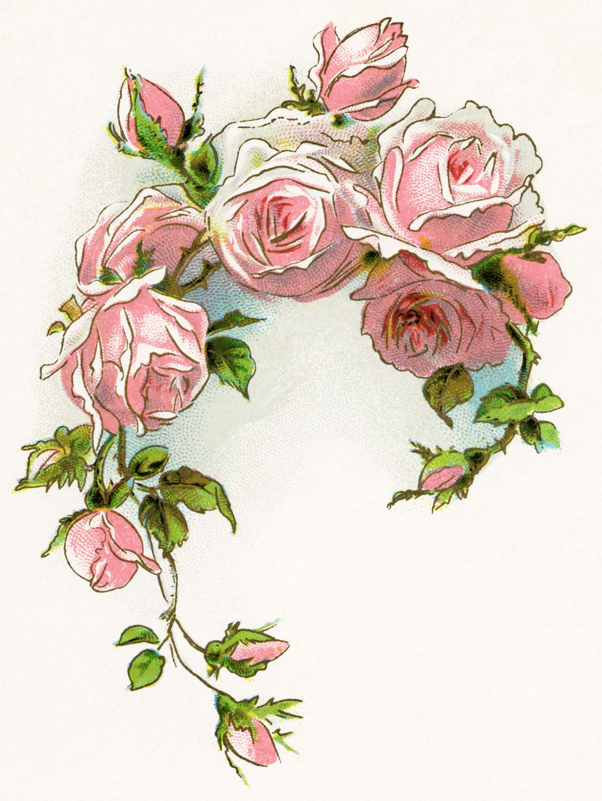 Clipart roses vintage. Victorian rose free image