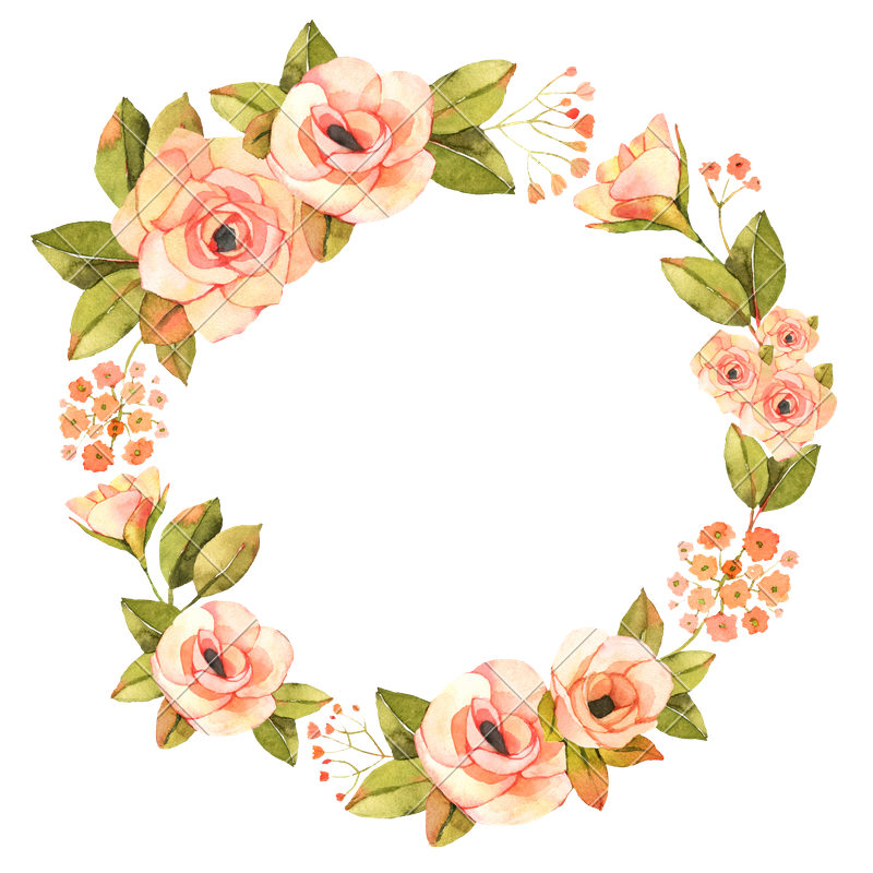 Painting rose. Watercolor flower wreath png