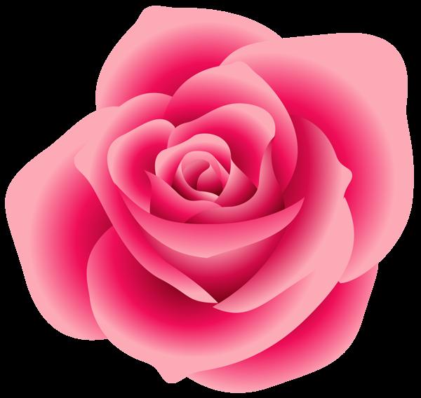 Pink desktop backgrounds large. Clipart roses bloom