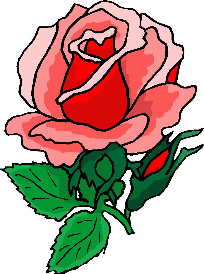 Rose garden free download. Clipart roses bloom