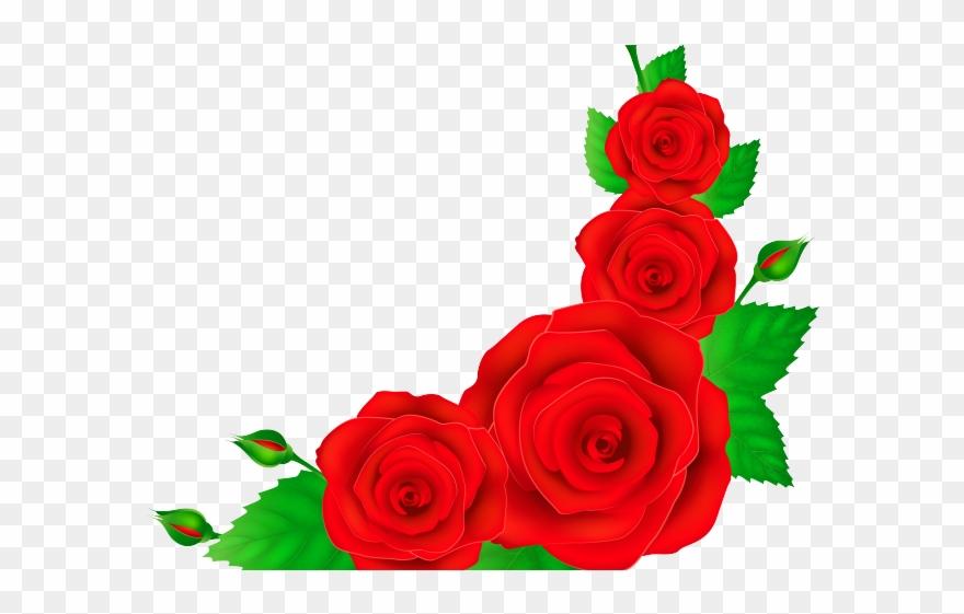 Clipart roses boarder. Border rose red corner