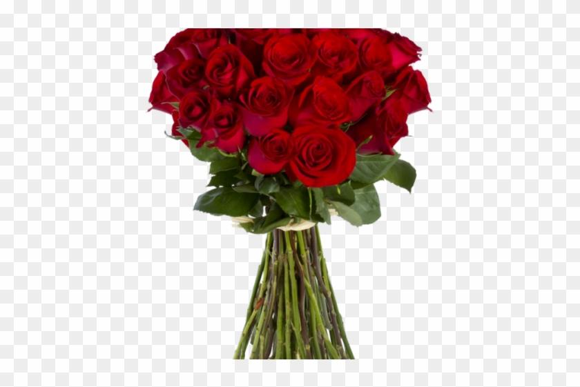 Clipart roses bucket. Bokeh flower red rose