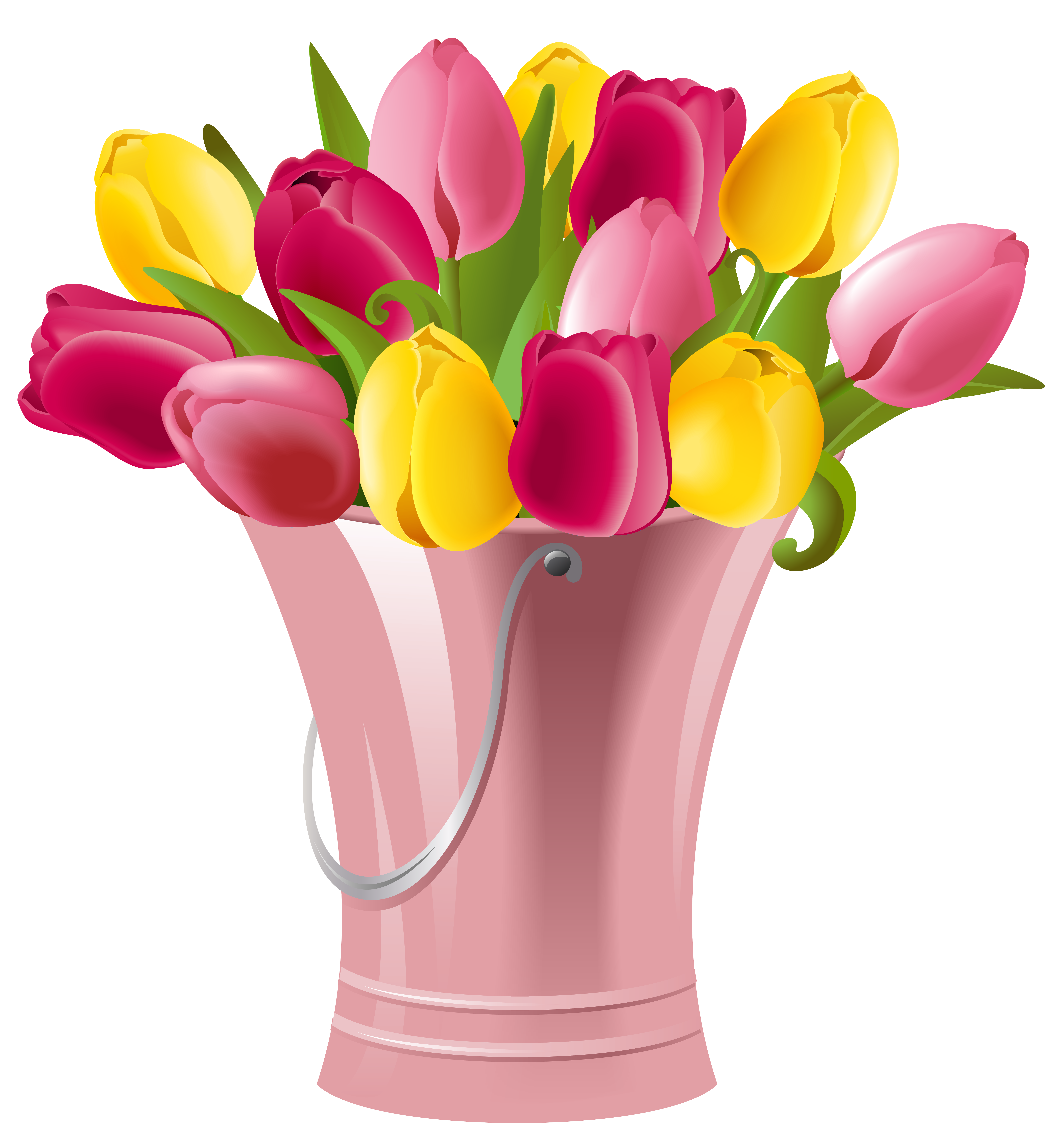 Clipart roses bucket. Spring with tulips transparent