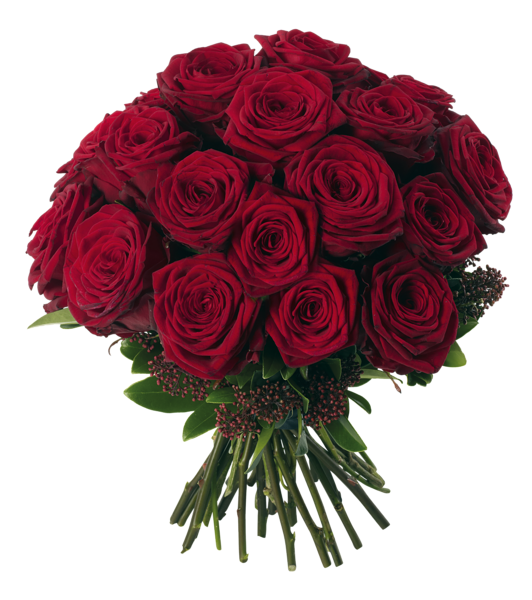 Transparent red bouquet png. Clipart roses bunch