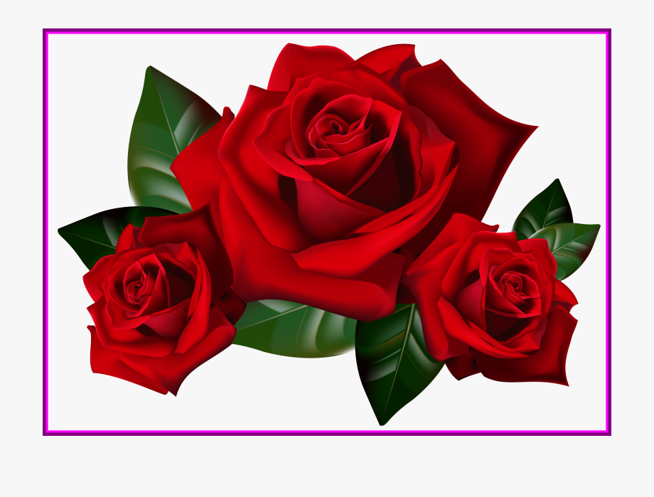 Appealing bouquet of frame. Rose clipart kid