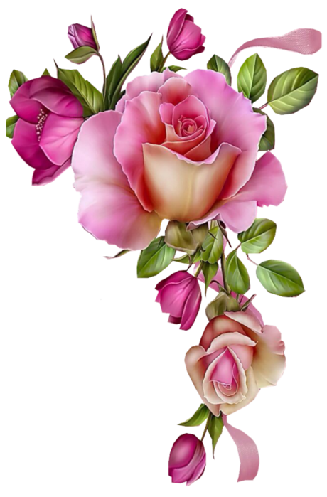 Clipart roses chalkboard.  p png buna