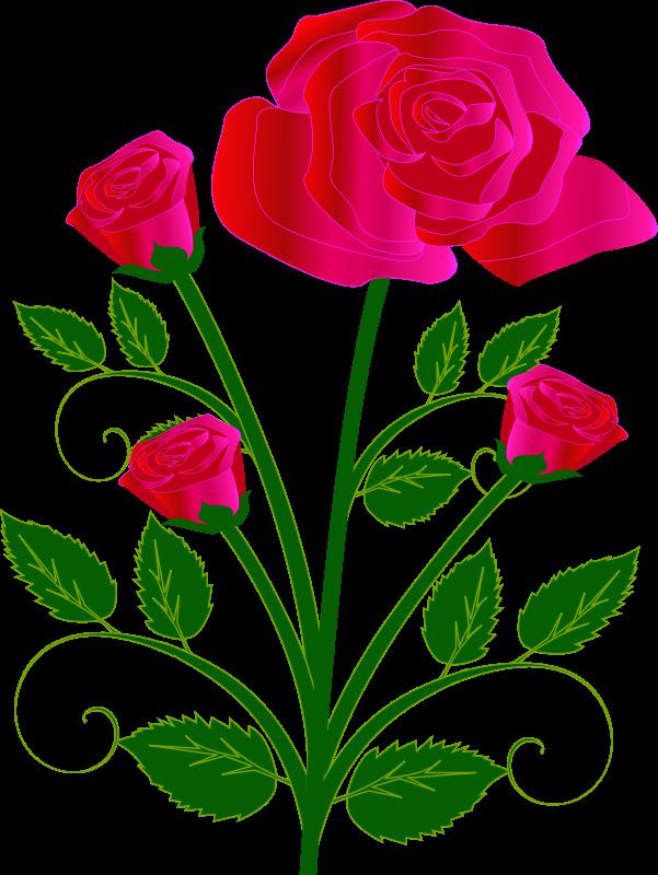 Single Pink Rose Clip Art
