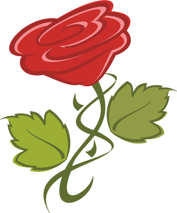 Clipart roses christmas. Flowers cliparts shop of