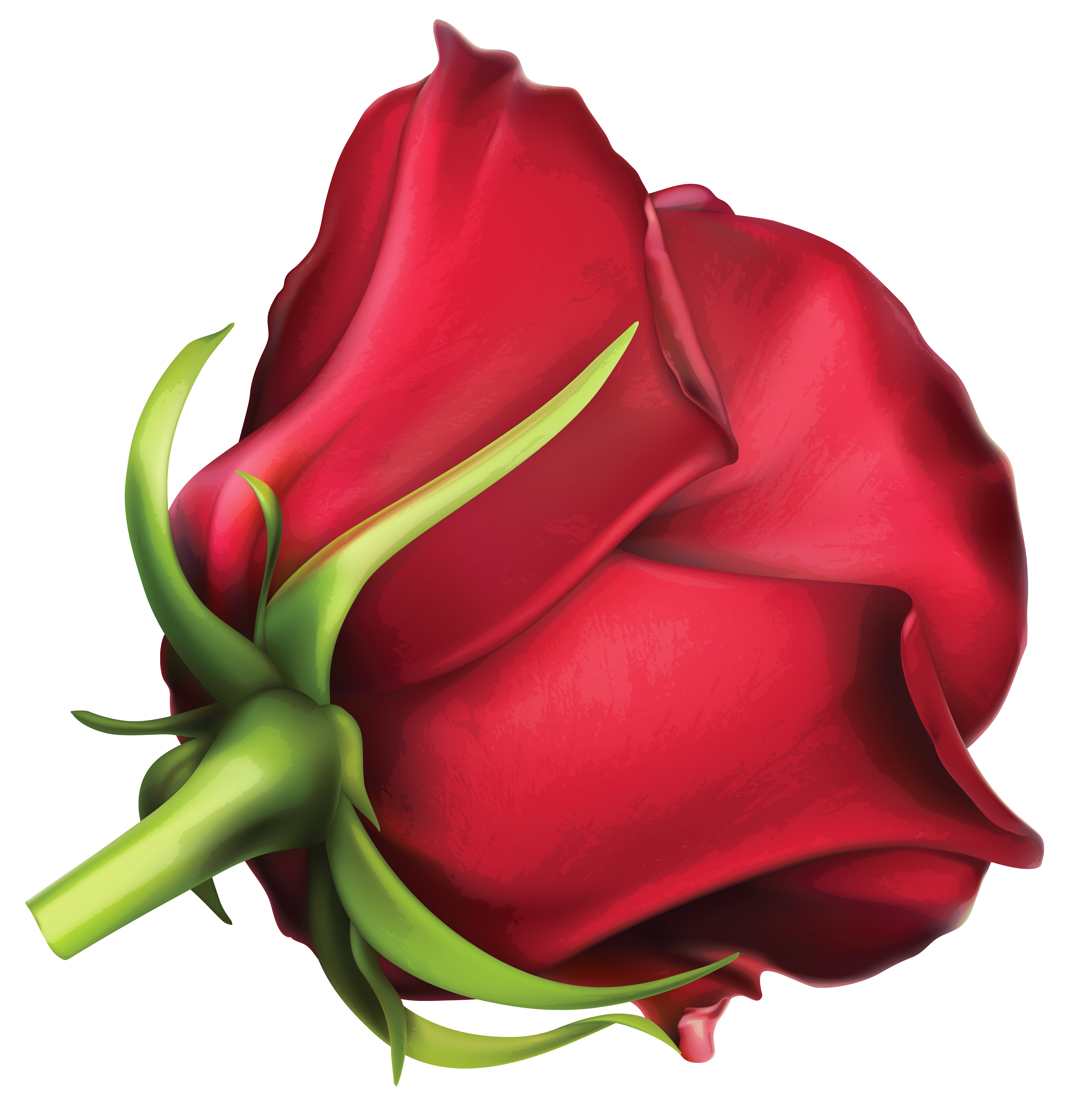 Rose pinart view full. Families clipart red