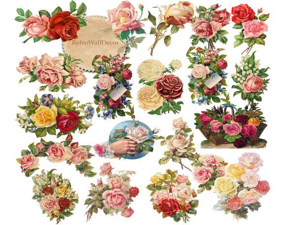 Clipart roses clip art. Flower vintage graphics floral