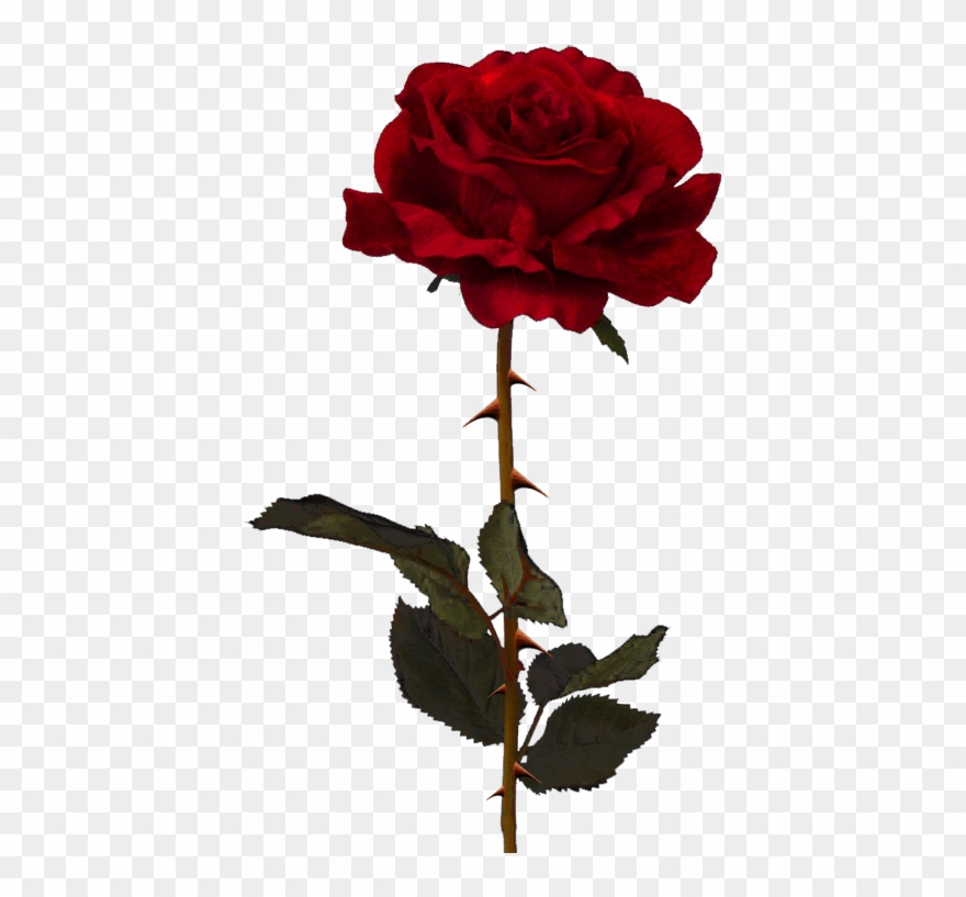 Emoji png printablehd pinclipart. Clipart roses dead rose