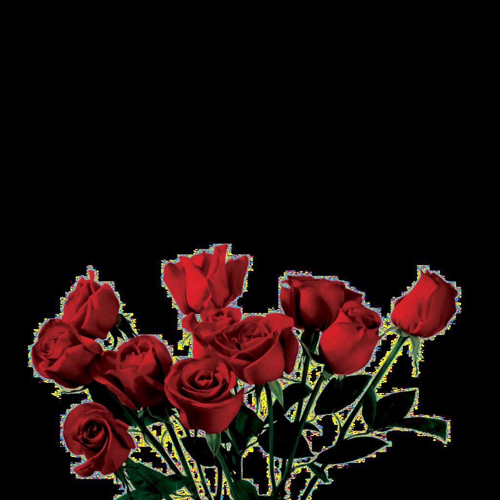 a c b. Clipart roses dead rose