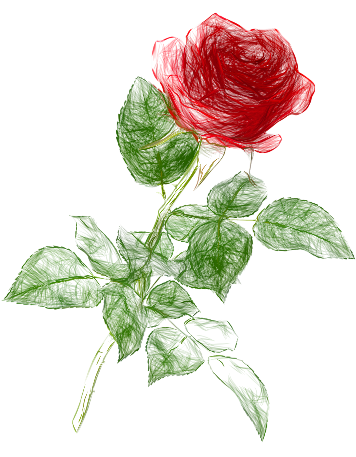 Rose drawing clip art. Clipart roses doodle