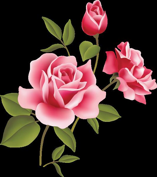 Rose clipart cute. Vintage png buscar con