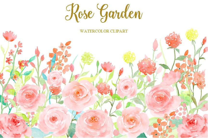 Clipart roses garden rose. Watercolor soft pink flower