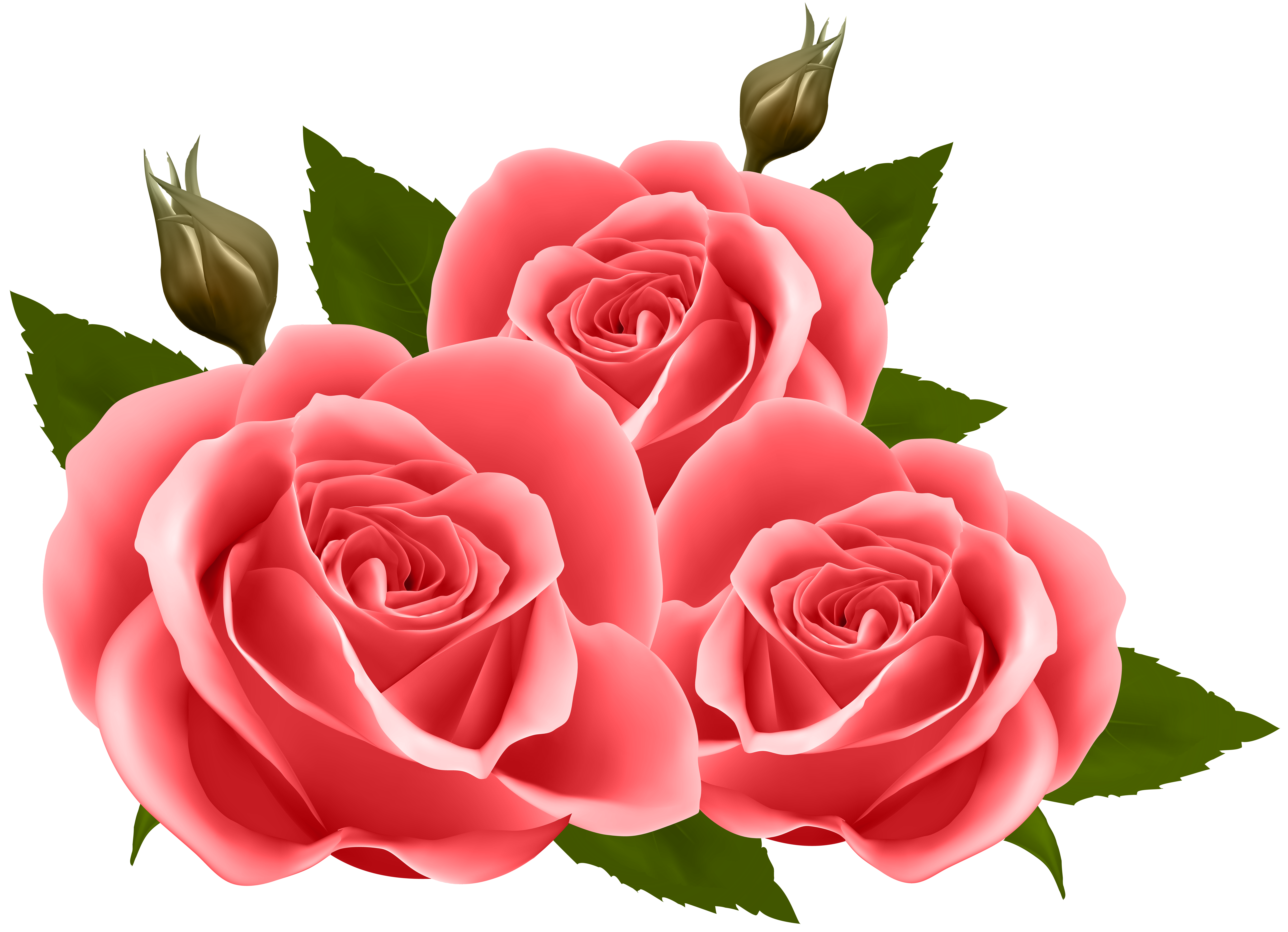 Red clip art image. Roses png images