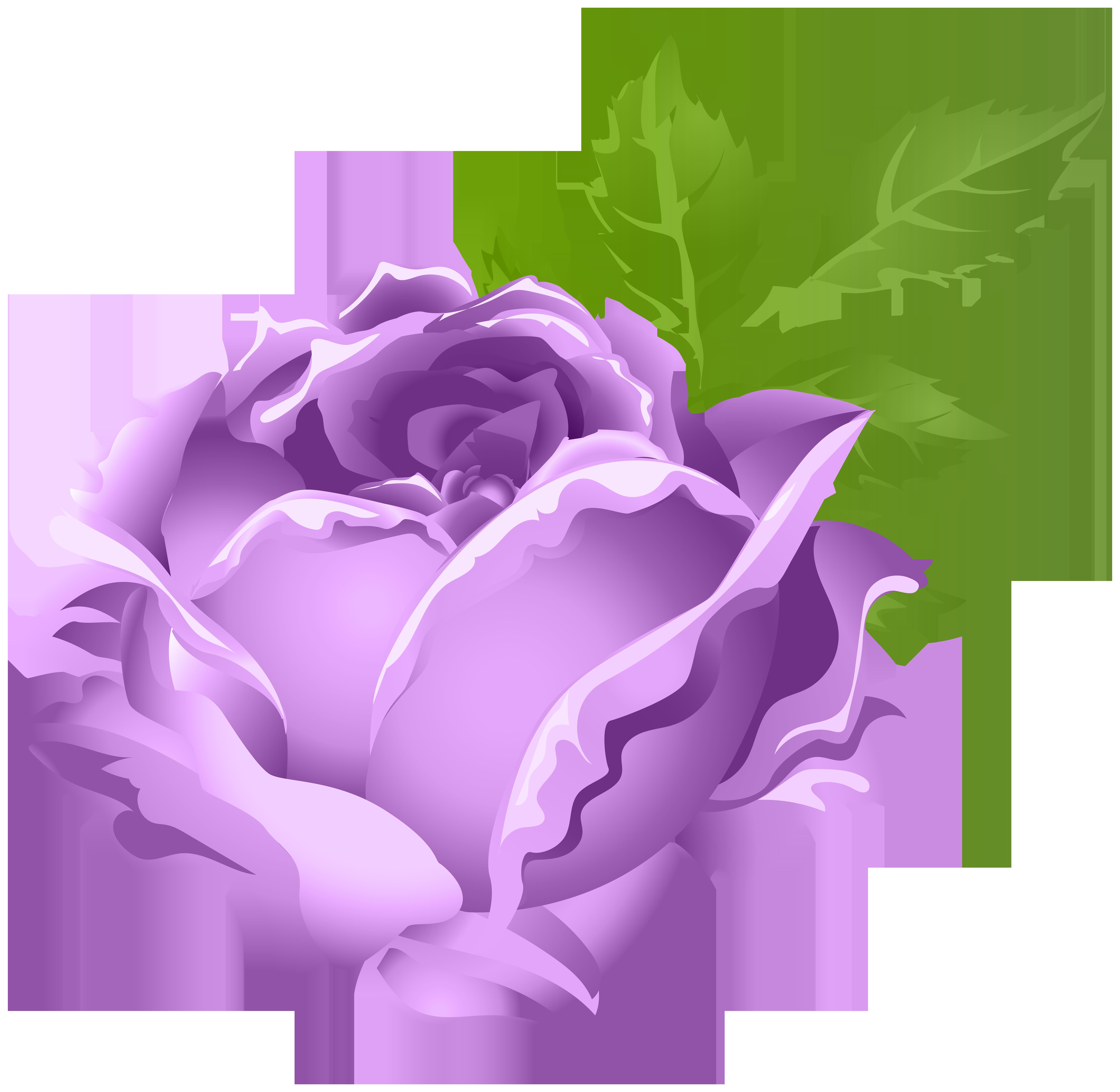 Clipart roses lavendar. Purple rose png clip
