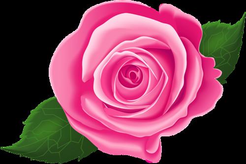 Pink flower cartoon rose. Clipart roses leaf