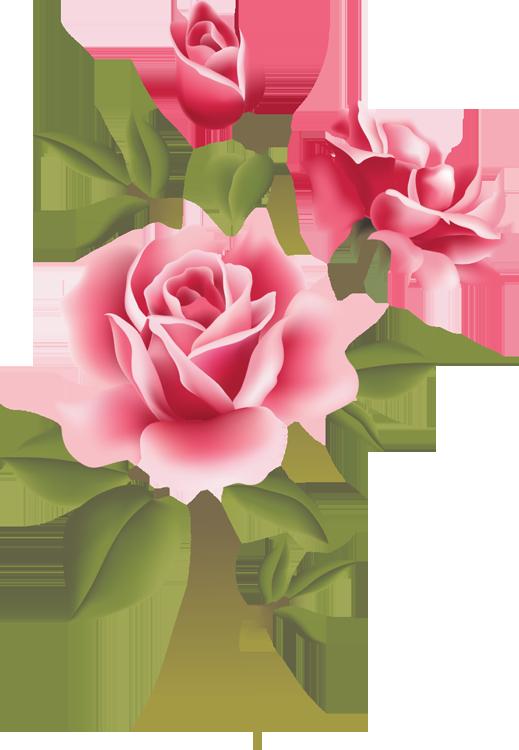 Web design development pinterest. Gem clipart rose colored