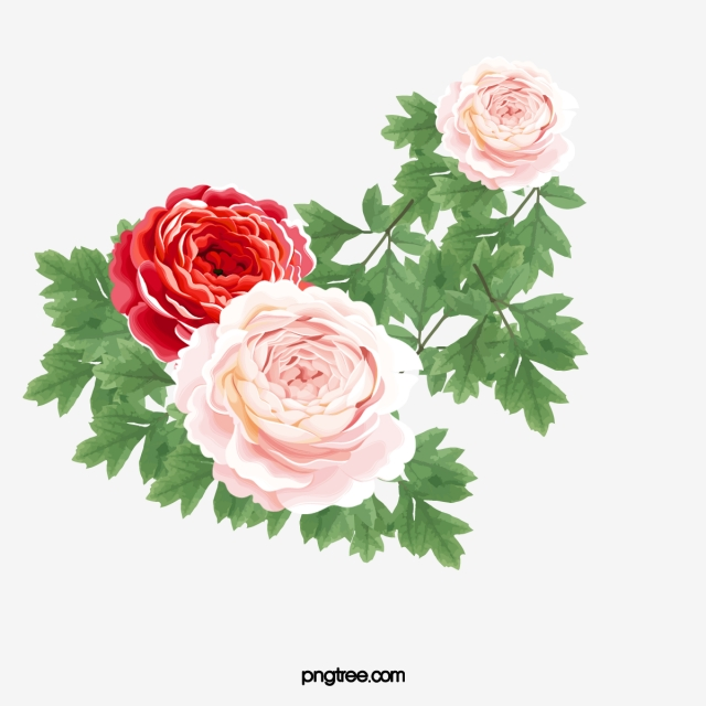 Clipart roses minimalist. Aesthetic flowers beautiful simple