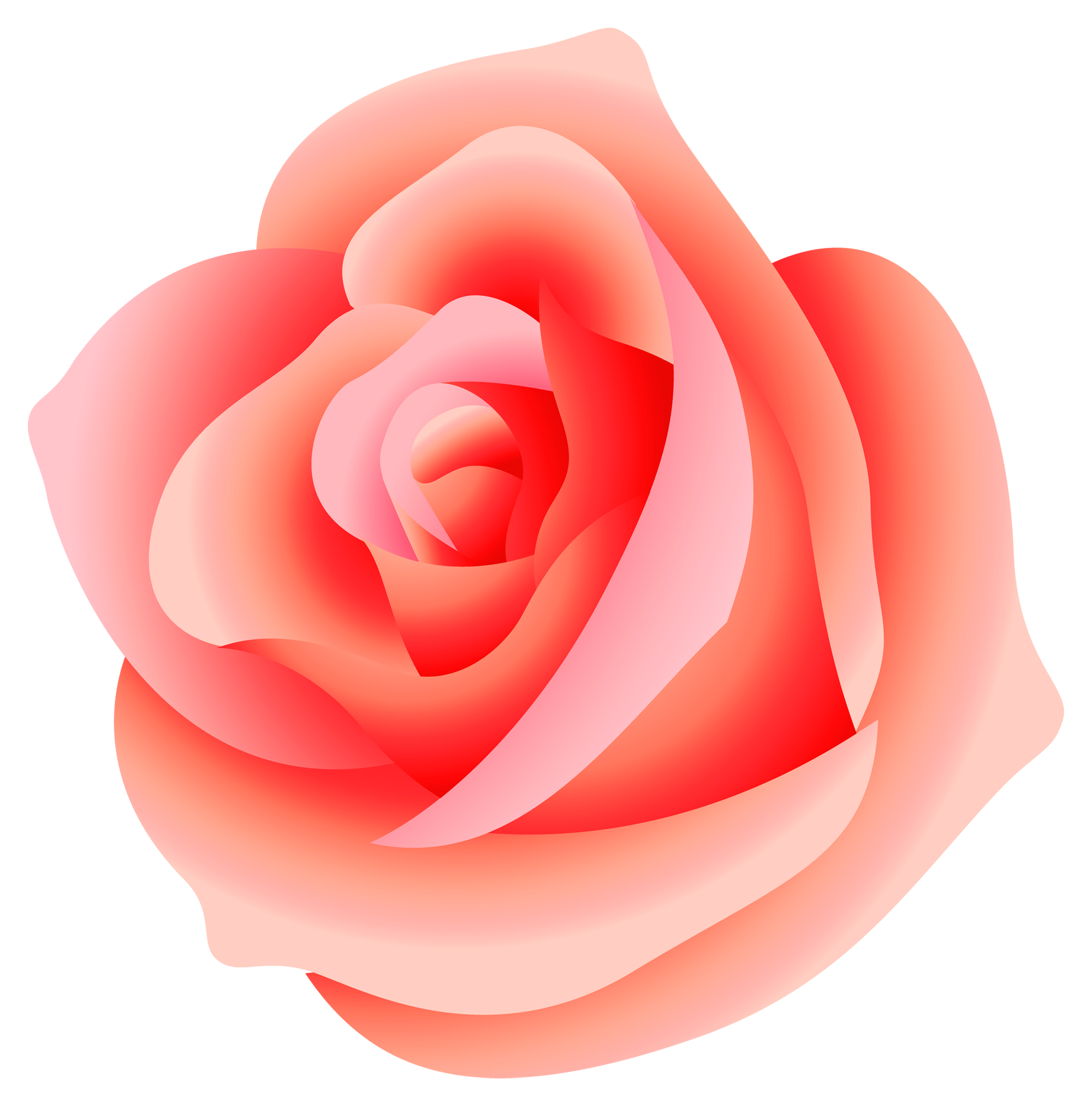 Large png picture gallery. Clipart roses peach rose