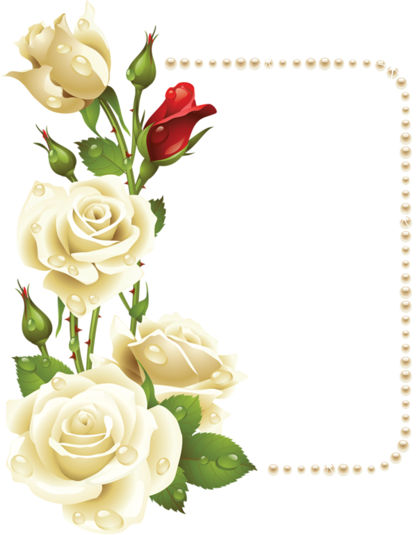 Forgetmenot jewels pearls frames. Clipart roses pearl