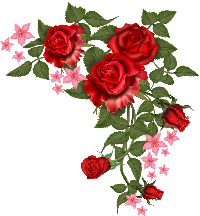 Clipart roses pearl. Flowers vector rosa png