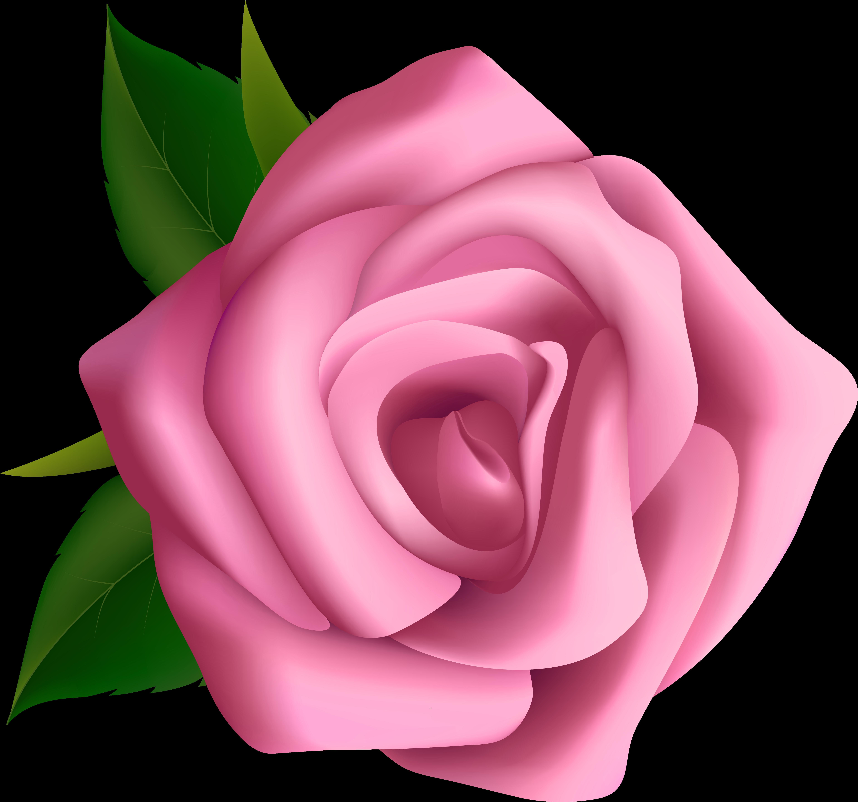 Hd large blumen clip. Clipart roses pink rose