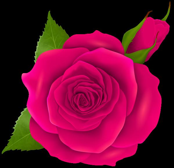 Clipart roses rose bud. At getdrawings com free