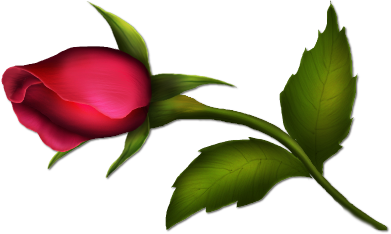 Painted gallery yopriceville high. Clipart roses rose bud