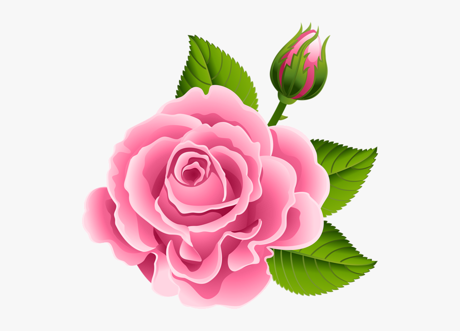 Buds overlays art images. Clipart roses rose bud