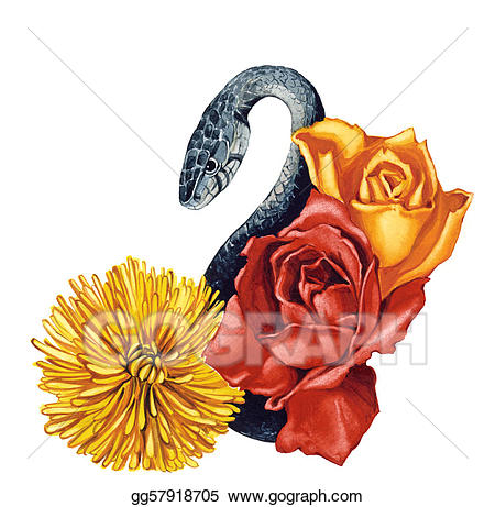 Clipart roses snake. Stock illustration and flowers