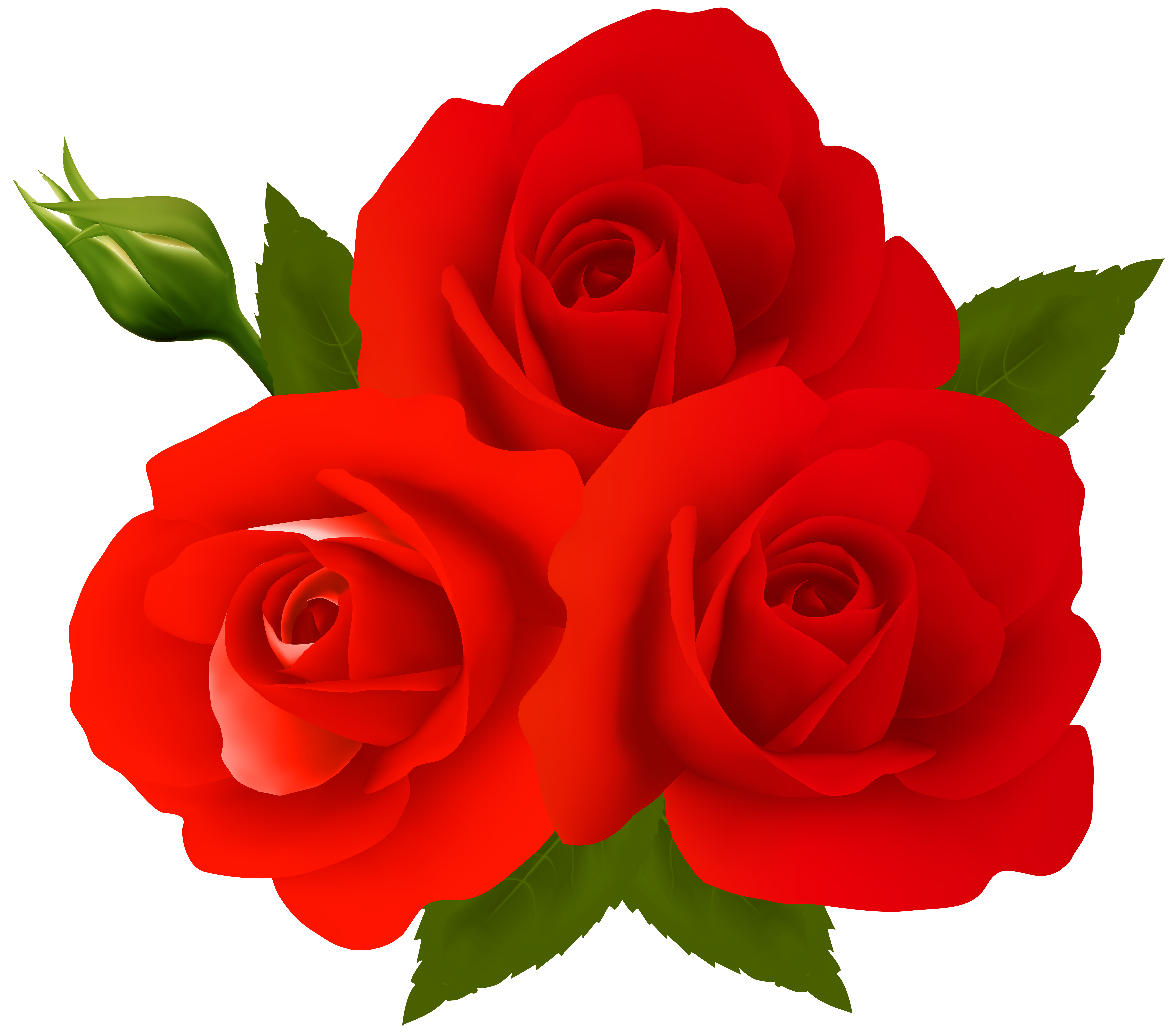 Png clip art gallery. Clipart roses stick