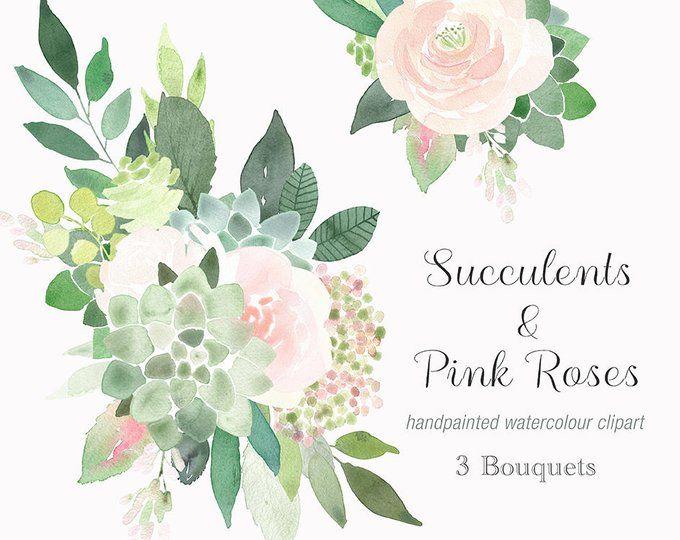 Clipart roses succulent. Succulents frames border frame