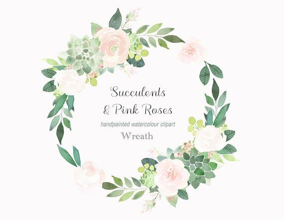 Watercolour succulents and pink. Clipart roses succulent