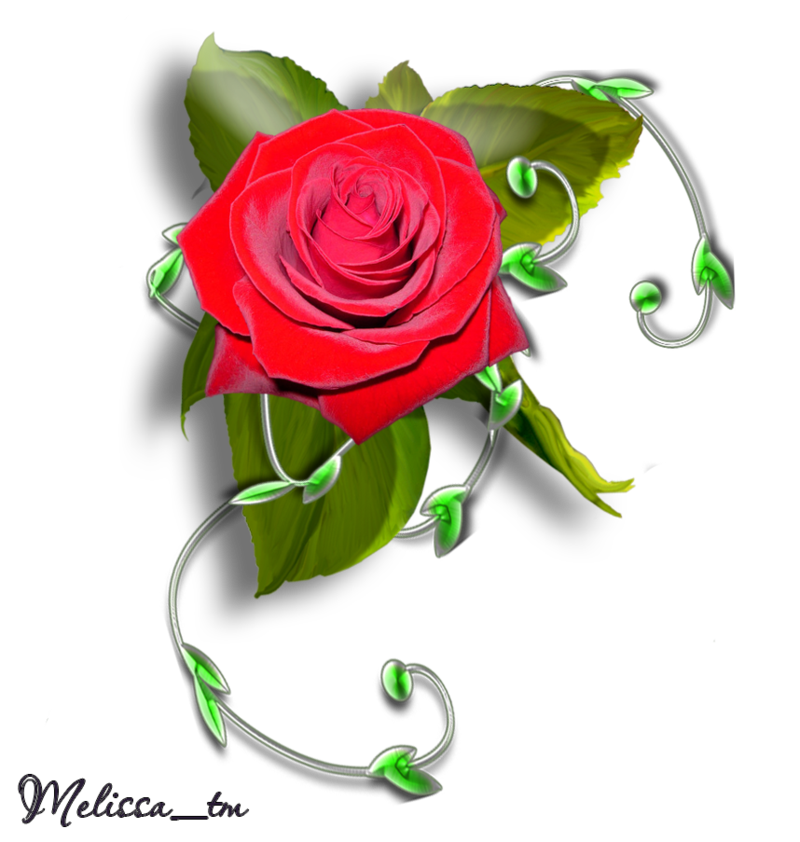 Element rose with leaves. Clipart roses swirl