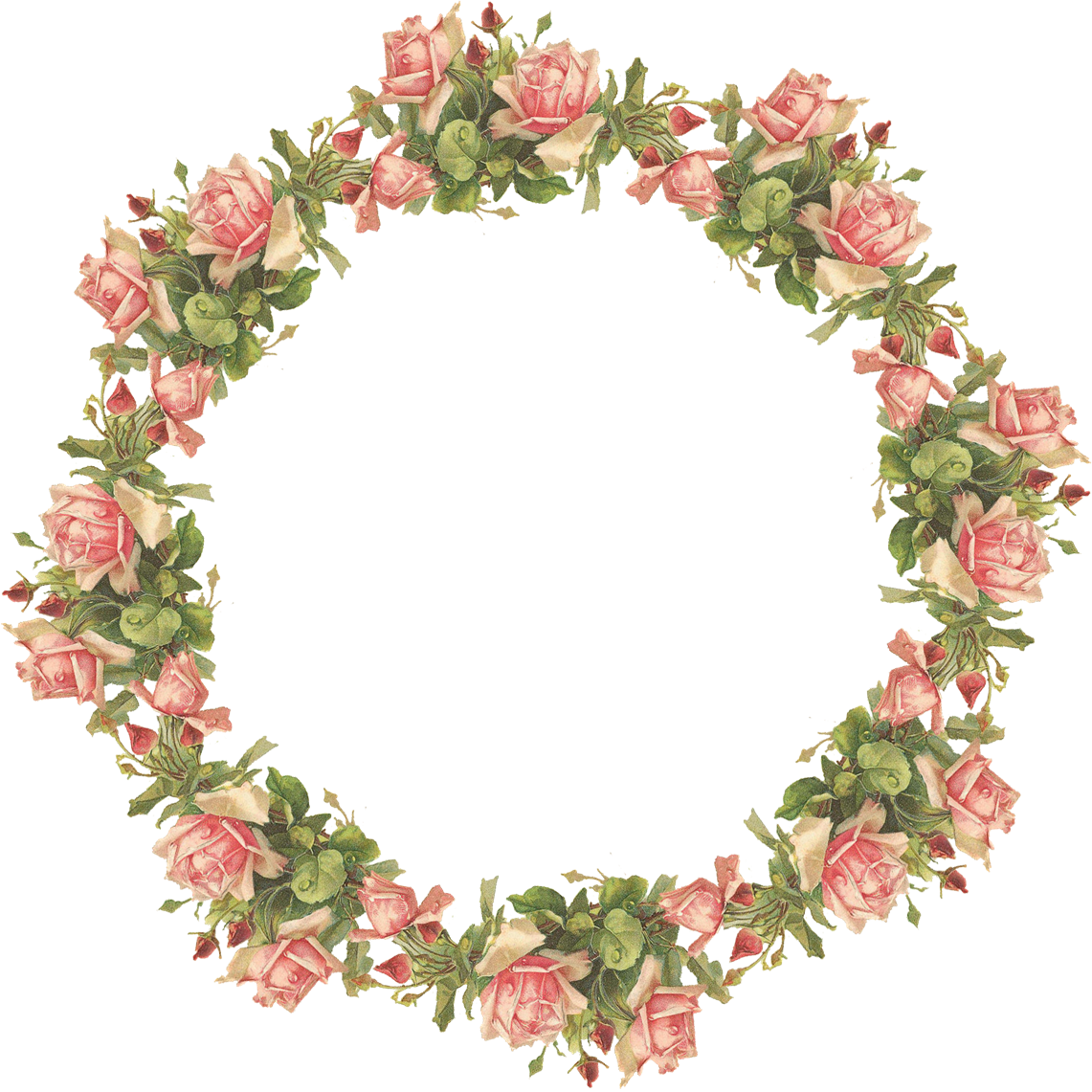 Clipart roses wreath. Related image transparent floral