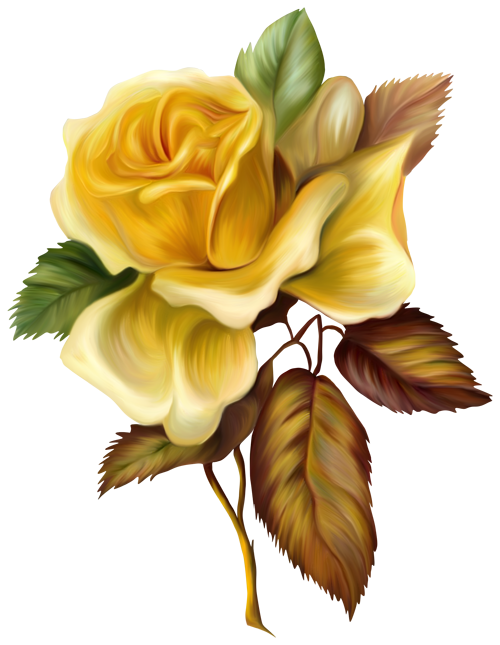 Clipart roses yellow rose. Painted picture gallery yopriceville