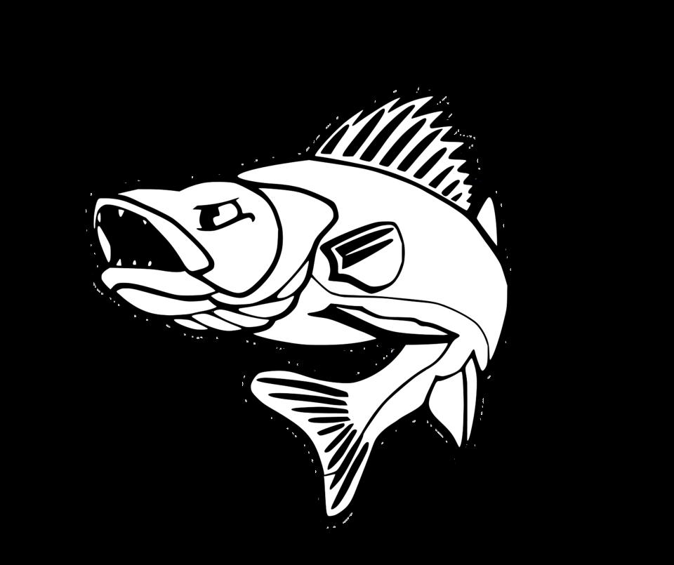 Walleye drawing at getdrawings. Clipart ruler fish